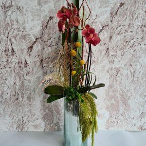 Encuentra un excelente regalo a domicilio en desde nuestra florería en línea con este precioso arreglo de orquídeas en una maceta lista para la entrega dentro de DF