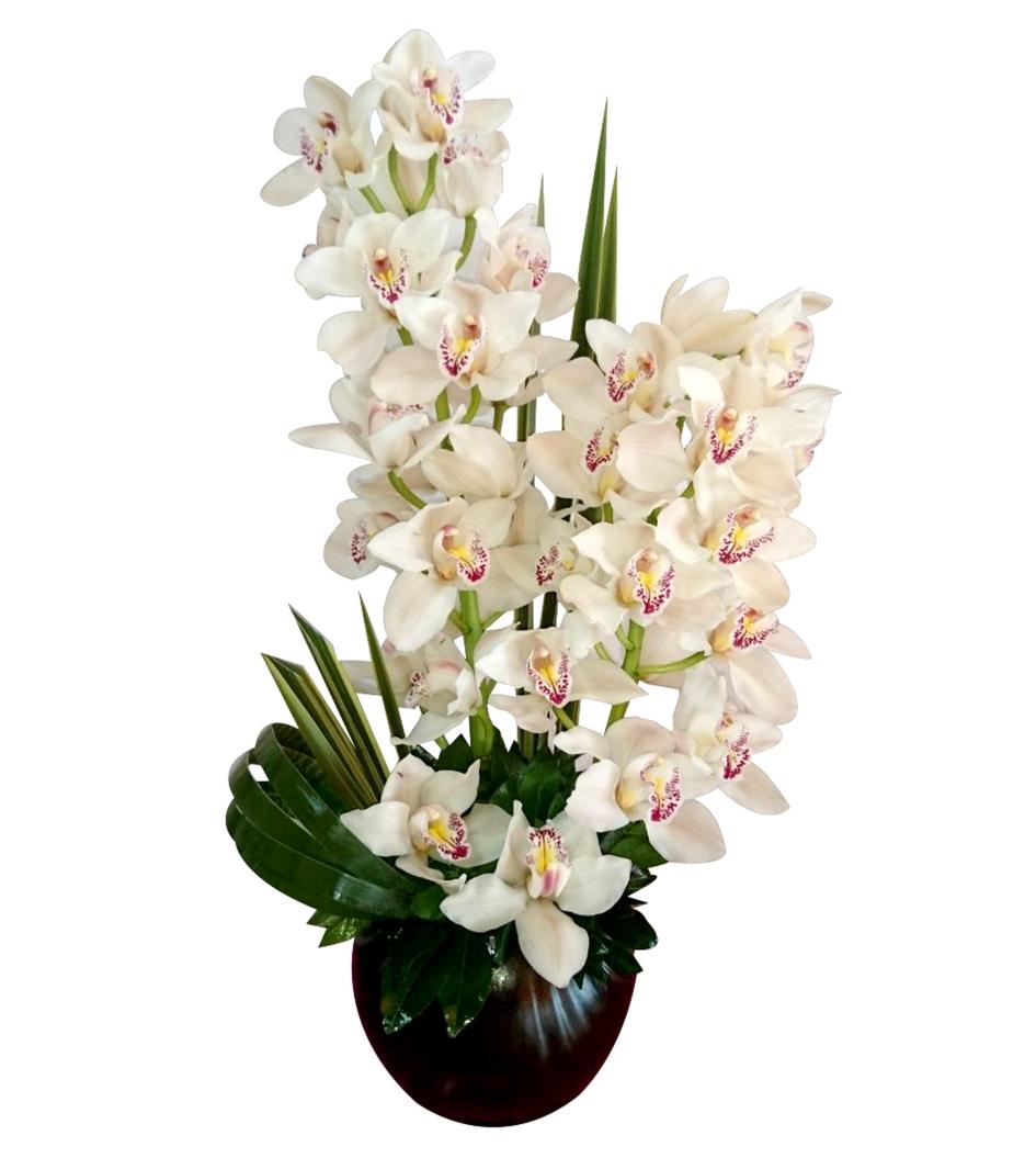 Arreglo Con Orquídeas 2 Piezas