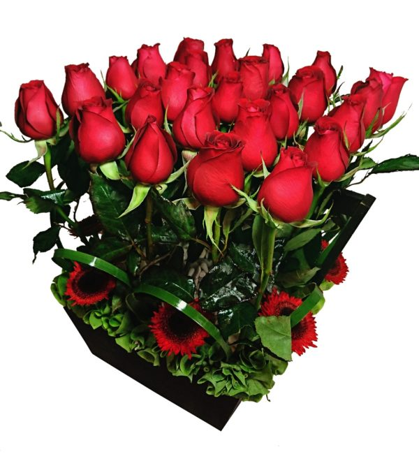 Arreglo de rosas 25 piezas
