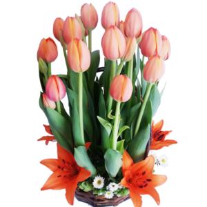 Arreglo de tulipanes rosas en canasta