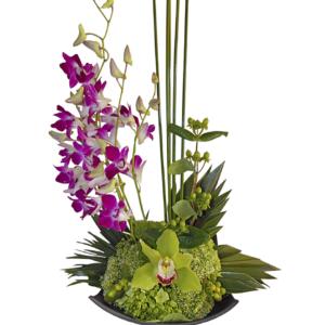 Arreglo de orquídeas en fina base