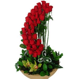 Rosas rojas en forma descendente
