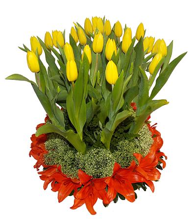 Arreglo de tulipanes y flores de lilis