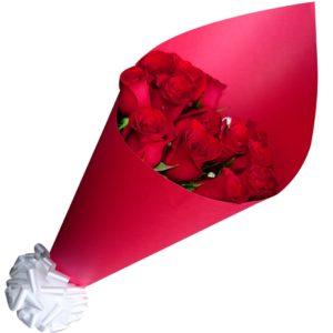 Ramo de rosas 12 piezas moño blanco