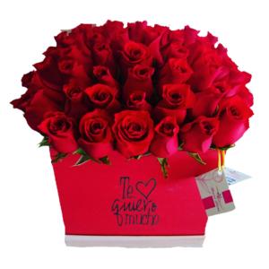 Caja de rosas rojas te quiero mucho