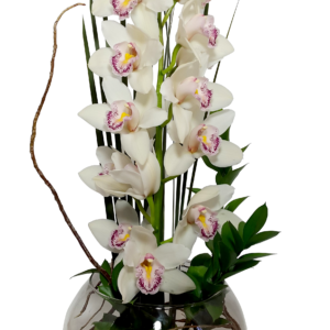 Arreglo de orquídeas en base de cristal