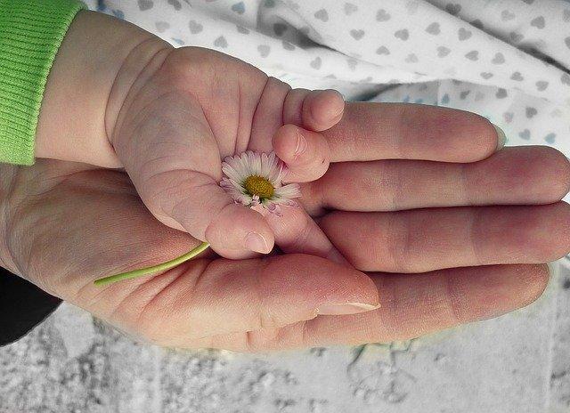 ¿Cuáles son las mejores flores para el día de las madres?