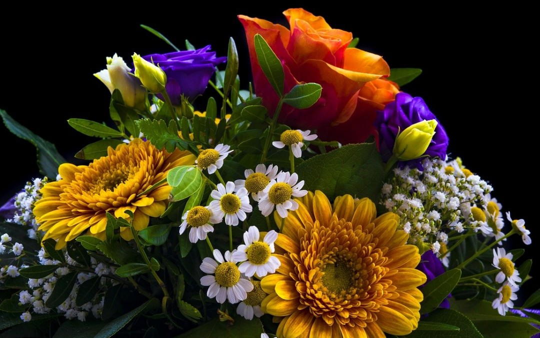 ¿Por qué se regalan flores para el 10 de mayo?